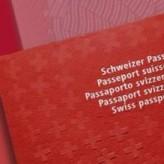 Пересмотр Закона о гражданстве